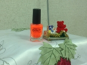 Nail Lacquer - Color Club 0.5 fl. oz. Koo-Koo Cachoo
